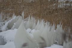 DSC06022 (Schep_B) Tags: closeup sneeuw ijspegels markermeer ijsschotsen kruiendijs deblocqvankuffeler