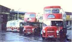 SST.SST 454 AEC reliance Alexander. FGM 19. FGM 21 Albion lowlander (ronnie.cameron2009) Tags: bus buses scotland scottish coaches doubledecker albion decker aec highlandomnibuses fgm19 fgm21 sst454