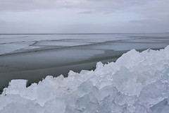 Kruiend IJs I (Marlies Platvoet) Tags: winter lelystad ijsselmeer driftingice kruiendijs oostvaardersdijk