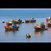 Boats in the Mui Ne Fishing Fleet, Mui Ne, Vietnam