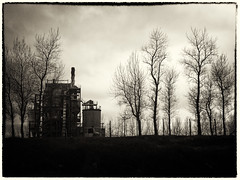 The Industrial Revolution (Feldore) Tags: trees ireland chimney irish industry nature silhouette landscape factory kerry bleak mchugh listowel industrialization feldore