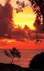 Obasamata Suba Aluthawurudakwewa !!             Happy Singhala & Tamil New Year!! (Sara-D) Tags: asia sl sri lanka srilanka ceylon lk southasia sarad saranga sarangadevadealwis sarangadeva sunsunriseyalayalanationalparklandscapeseanature