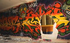 Passage clandestin pour bassin orthopdique (B.RANZA) Tags: streetart graffiti tag trace urbanart histoire waste graff sanatorium hopital empreinte exil cmc patrimoine urbex disparition abandonedplace mmoire friche centremdicochirurgical