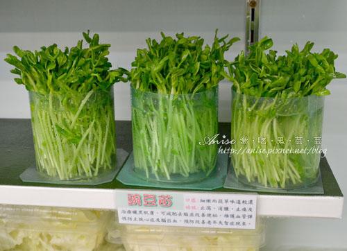 辣滷哇蔬菜森林026.jpg
