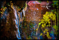 Seep Without Sleep (inneriart) Tags: nature water beautiful rock skyscape landscape outside outdoors photography utah amazing nikon colorful pretty heaven artist dof emotion hiking unique fineart creative cliffs adventure saltlakecity adobe american passion sacred stunning zionnationalpark southernutah redrock done weeping freelance zions virginriver adventuring holyplace inneri hannahgalliinneri nikond300s photoshopcs5 photographyinneri inneriart innereyeart inneri wholehannah 2011116zionsnationalparkscottycantrellstgeorge dsc0024colorlogo inneriartcom httpinneriartcom
