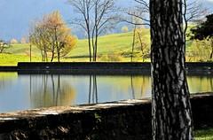 Reflets dans le lac de Brt (Diegojack) Tags: eau lac reflets brt
