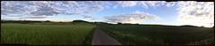 Wertsbacher Weg in der Abendsonne (AndreasHerbert) Tags: frühling abendsonne hunsrück mörschied