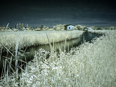 "Infrarot Foto  Radweg (""MRperspektiveFoto"" Steiermark - Graz - Fotos) Tags: ir natur felder infrarot infrarotfotografie mhlgang"