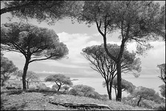 Barbate (togipan) Tags: noiretblanc barbate landscapesdreams