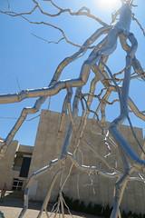 IMG_3360 (Mud Boy) Tags: israel jerusalem middleeast inversion levant israelmuseum roxypaine thelevantisanapproximatehistoricalgeographicaltermreferringtoalargeareaintheeasternmediterranean museuminjerusalemisrael derechruppinjerusalemisrael thebillyroseartgarden thebillyroseartgarden despiterisingcompetitionthisremainsoneofthemostimpressiveartsvenuesinthemiddleeast a100mrenovationand2010extensiondesignedbyjamescarpenterhasboosteditsappealcarpenterretainedthemuseumsoriginal1965modernistfootprintcreatedbyalfredmansfeldaddingterracesandglasspavilions theisraelmuseumwasfoundedin1965asisraelsnationalmuseumitissituatedonahillinthegivatramneighborhoodofjerusalemnearthebiblelandsmuseumtheknessettheisraelisupremecourtandthehebrewuniversityofjerusalem roxypaineinversion