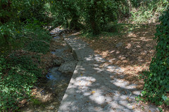 (Psinthos.Net) Tags: trees light summer sunlight nature water leaves june countryside rocks day pavement path stones bottom roots valley noon sunrays planetrees sunnyday bramble fallenleaves paved rivulet treetrunks         psinthos   wildivy        fasouli          psinthosvalley fasoulipsinthos  fasoulivalley