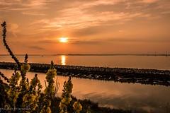 sunrise in p di levante (paolotrapella) Tags: water sunrise eos mare alba acqua 600d beachcanon