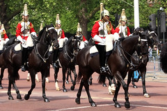 Life Guards (NTG's pictures) Tags: the major generals review rehearsal for trooping colour british army household division cavalry blues royals lifeguards london mall