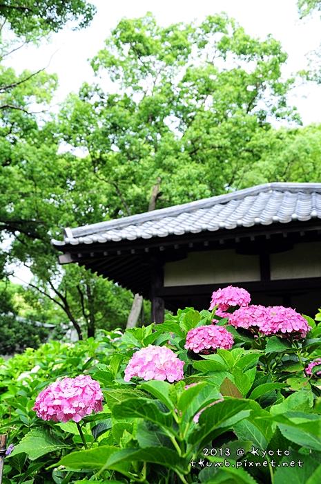 2013藤森神社6.jpg
