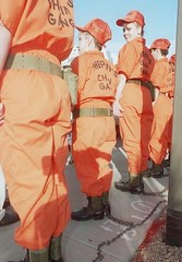 chain gang ladies (Inmate_Stripes) Tags: orange female chains women prison jail chaingang prisoners inmates