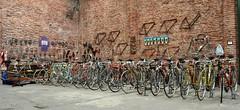 Bicycle collection (coventryeagle48) Tags: raleigh frejus benotto lygie jacktaylor legnano taurea gloriagaribaldina learcoguerra bianchirekord williertriestina giusepeolmo stellaroyalcampagnolofbvintagebrookscinelliambrosio amerioballoncina