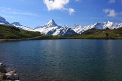 Region Grindelwald-Bachalpsee (uwelino) Tags: alps schweiz switzerland europa europe first grindelwald alpen eiger jungfrau mnch berneroberland bachalpsee