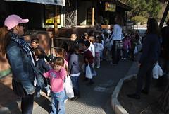 colegio-orvalle-infantil-zoo (26)