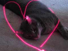 I Love My Kitty (jdawn1982) Tags: light red max oklahoma cat heart laser swirl woodwardcounty woodwardok march2012