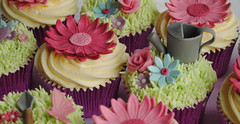 Pink Gerbera's and Garden Themed Cupcakes (thecustomcakeshop) Tags: pink flowers roses cakes cup grass rose cake butterfly garden cupcakes pretty day gorgeous mother butterflies can mothers cupcake gerbera theme themed wateringcan gerberas watering