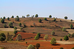 Hillscape (cormend) Tags: travel blue sky orange tree green nature trekking trek canon landscape eos asia br burma hill myanmar southeast kalaw 50d cormend