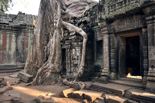 Ta Phohm - the trees are winning!