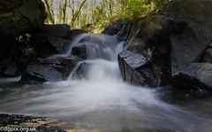 Waterfall (Danny Gibson) Tags: park trees urban water woodland river waterfall stream brook gosfordforestpark dgpixorguk