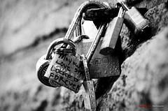 Lock Love (GQjai) Tags: nyc bw love nikon lock brooklynbridge padlock blackwhitephoto blackwhitephotos lovepadlocks d7000 gqjai