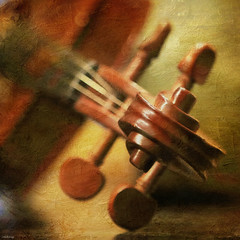 Violin [ EXPLORED ] (-clicking-) Tags: lighting light music stilllife texture square dof bokeh musical violin squareformat instrument strings miscellaneous instrumental 500x500