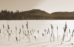 Sentier des Caps 3 (gsamie) Tags: winter lake snow canada cold ice sepia trekking canon landscape snowshoe qubec saintlaurent t3i saintlawrence 600d sentierdescaps sainttitedescaps gsamie guillaumesamie