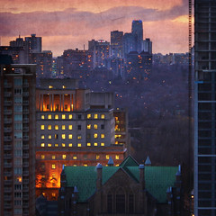 Toronto's Mixed Forest. After Fiery Sunset (Katrin Ray) Tags: blue sky orange toronto ontario can