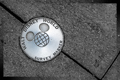 A Piece of Disney History (CL Photographs) Tags: world sunset history orlando nikon boulevard florida disney hollywood marker nikkor studios walt survey 1635mm d700 dvcphoto92