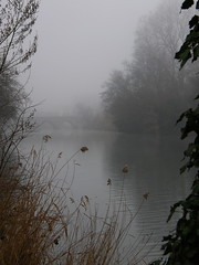 Foggy AM (Annie in Beziers) Tags: bridge france water misty fog river roman explore pont murky brouillard lorb bziers laplantade annieinbziers foggymorningwalkies lepontvieuxbziers