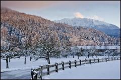 Winterwunderland (BM-Licht) Tags: schnee winter snow cold germany bayern deutschland bavaria nikon 1750 tamron kalt oberland benediktbeuern d7000