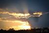 10042012-DSC_4742 copy (omarRZC) Tags: sol atardecer aves cielo parvada