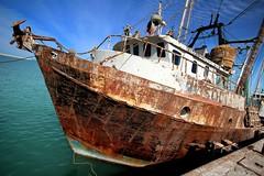 cancer sucks... (woodwork's) Tags: mexico rust baja seaofcortez shrimpboat cancersucks rustneversleeps sanfelipebcmx