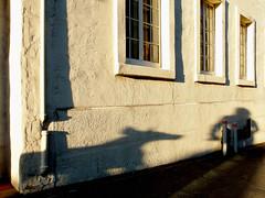 (pixOlga) Tags: street light dog sun shadows silhouettes littledoglaughedstories