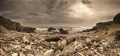 Madera de deriva (Jose Peral Merino) Tags: sea sky landscape atardecer mar madera playa cielo nubes ocaso rocas cantabria panormica liencres