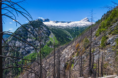 Some west views (johnwporter) Tags: mountains nationalpark hiking mountainclimbing wideangle cascades mountaineering wilderness pnw 山 scramble northcascades northcascadesnationalpark peakbagging wideanglelens 國家公園 爬山 徒步 登山 northcascadeshighway 爬行 廣角 荒野 davispeak 廣角鏡 rosslakenationalrecreationarea stephenmatherwilderness tokinaaf1116mmf28 atx116prodx 戴維斯峯 northwestisbest 羅斯湖國家遊樂區 北喀斯喀特山脈 北喀斯喀特山脈公路 北喀斯喀特山脈國家公園 upperleftusa 太平洋西北部 喀斯喀特山脈 美國左上角 西北部最好 捕峯 史蒂芬馬瑟荒野