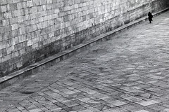 (N. Feans) Tags: leica santiago film kodak tmax voigtlander olympus 11 scan galicia galiza ii 400 compostela m3 50 60 quintana mortos em5 mzuiko
