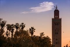 KoutubiaContraluz (Zu Sanchez) Tags: canon morocco maroc marrakech marrakesh marruecos 70d koutubia canoneos70d zsnchez zusanchez