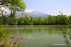 Etna _ Lago Gurrida (piero.mammino) Tags: sicilia sicily etna vulcano volcano lago lake landscape water alberi trees snow neve