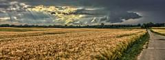 Thunderstorm & Clouds (*Nils aus Kiel*) Tags: panorama clouds germany landscape deutschland lights wolken thunderstorm landschaft gewitter hdr