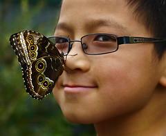 butterfly boy (marianna.armata) Tags: blue boy portrait silly cute butterfly asian kid funny child bokeh humour oriental mariannaarmata
