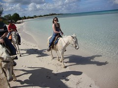 Guardalavaca, Cuba (Hear and Their) Tags: horses beach club caballo amigo hotel cowboy cuba riding cuban atlantico guardalavaca