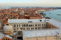 Venice 3696