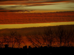 STRIPED SUNSET OVER CITY (ikan1711) Tags: silhouettes sunsets sunrises cityskyline silhouettedtrees redsunsets redsunrises colourfulsunsets colourfulsunrises stripedsunsets goldandredskies darkcityskyline mixedskyscenes