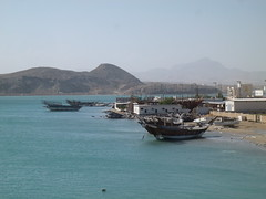 Dhows etc. from bridge (John Steedman) Tags: sur dhows oman dhow  sultanateofoman