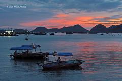 Cat Ba Island Sunset,  Vit Nam (Loco Moco Photos) Tags: world sunset heritage boats island site unesco vietnam limestone isles halongbay islets catba karsts quangninh