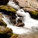神农架之水